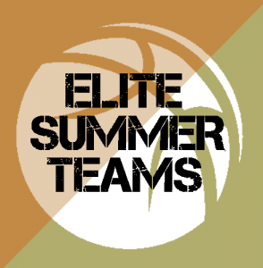 elitesummerteams