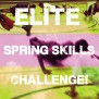 NEW-ELITE-SPRING-SKILLS-LOGO