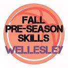 Fall Basketball Skills Wellesley, MA!